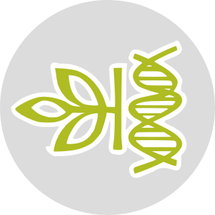 AncestryDNA Upload